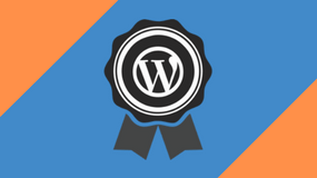 avanceret-wordpress kursus