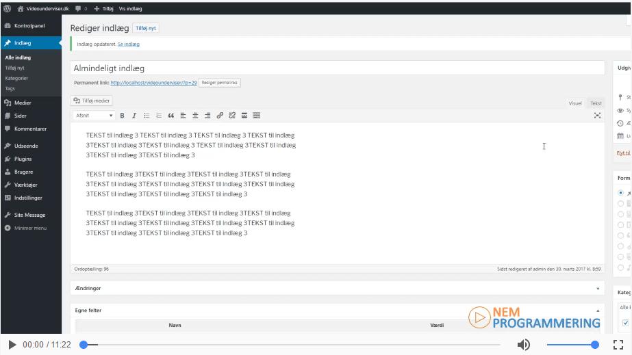 Sådan anvender du custom fields på dine WordPress indlæg