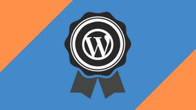 Avanceret WordPress