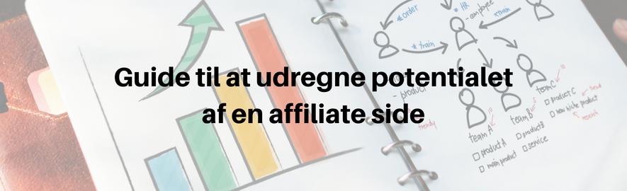 guide til affiliate indtjening