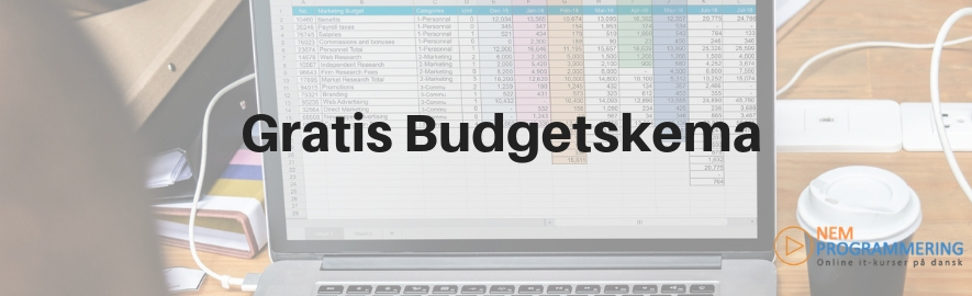 Gratis budgetskema
