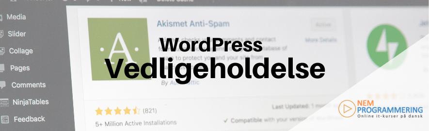 vedligeholdelse af din WordPress hjemmeside
